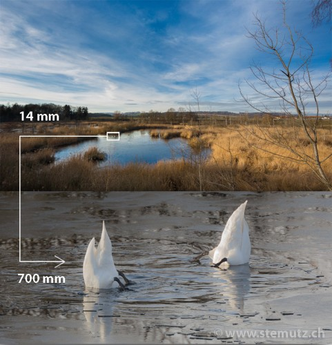 Get closer to your subject: 14 mm wide angle vs. 700 mm tele-objective