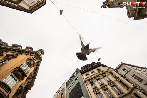 Pigeon Fly-Over between the Buildings ... Street Photography @ Lausanne City