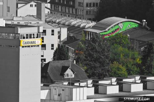 Two classics in Fribourg, Cardinal vs. Fri-Son, Fribourg, Suisse, 2011