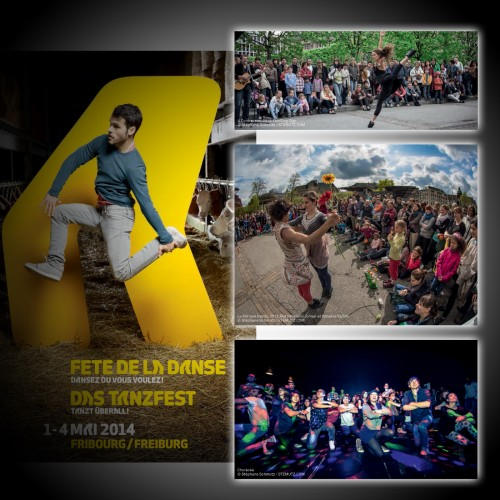 Publishing of 3 Pictures in the Program of Das Tanzfest 2014, Fribourg