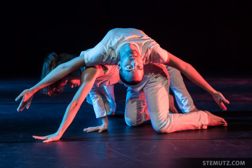 Contemporary Dance Event InciDanse 2013 in Fribourg